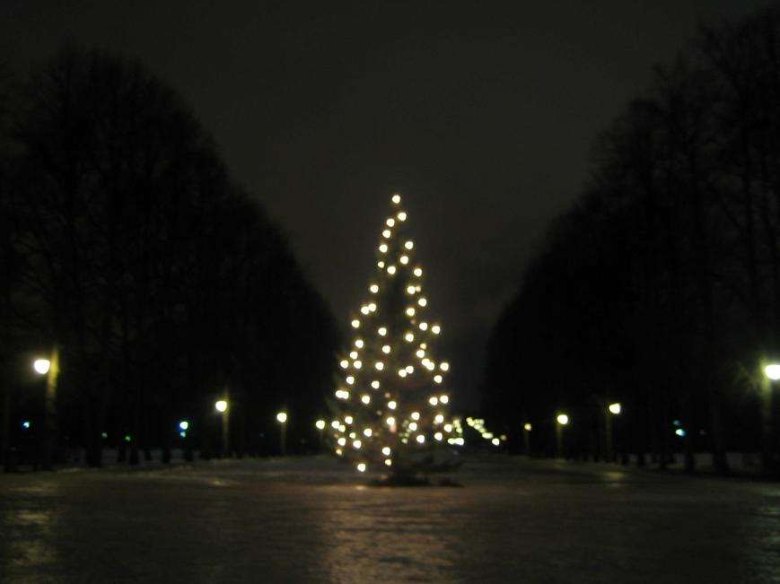 Christmas tree near the entrance of the Vigeland Sculpture Park.