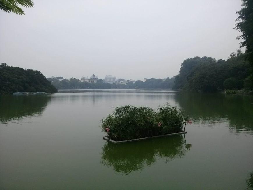 Pond near the KFC.